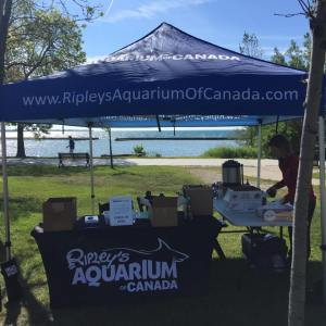 Ripleys-Aquarium-Canada-Great-Canadian-Shoreline-Cleanup