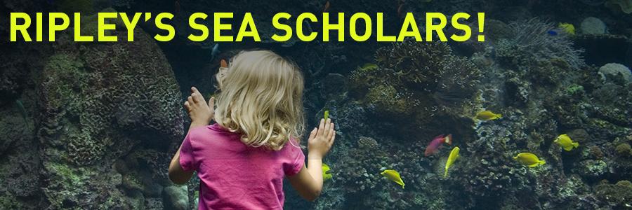 seascholars