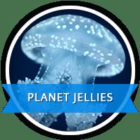 planet jellies