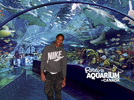 demar-derozan-ripleys-aquarium-of-canada