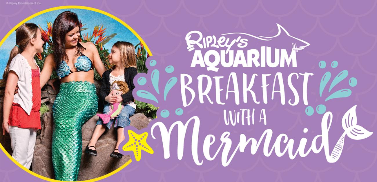 Gatlinburg Calendar Of Events 2020.Breakfast With A Mermaid Ripley S Aquarium Of The Smokies