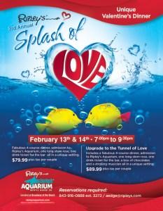 2016-Splash-of-Love-Flyer