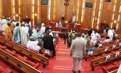 Senators 'quarrel' as Saraki moves to probe Buhari's appointments
