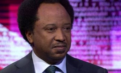 LIBEL: Sen. Sani files N5bn counter claim against Gov El-Rufai