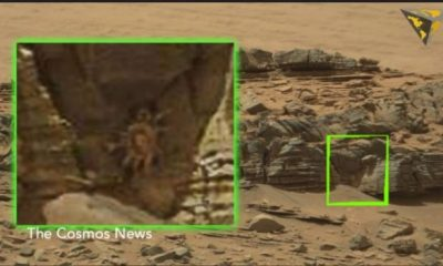 NASA spots more alien spiders on Mars