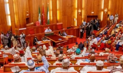 2020 BUDGET: Senators query proposed VAT increase, others