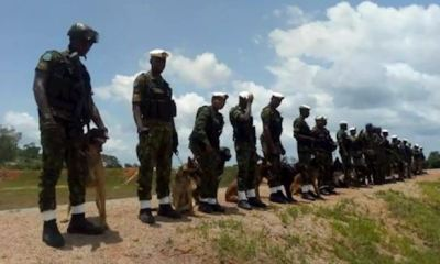 Nigeria Air Force trains, deploys dogs for operations