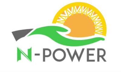 ADAMAWA: Nigerian govt sacks 30 N-Power beneficiaries