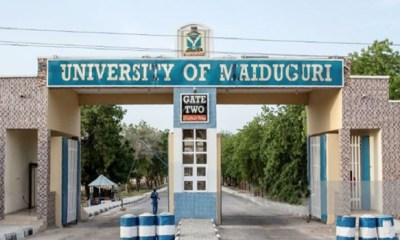 Boko Haram kidnaps, kills UNIMAID student