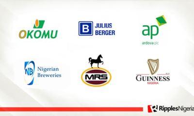 Okomu Oil, Julius Berger, Ardova top Ripples Nigeria stock watchlist