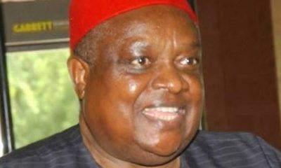 Iwuanyanwu says IPOB leader, Nnamdi Kanu, chasing Biafra the wrong way