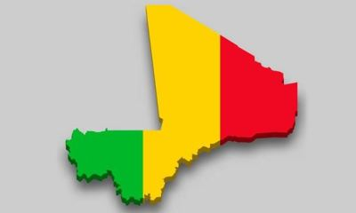 Like ECOWAS, African Union suspends Mali, threatens sanctions