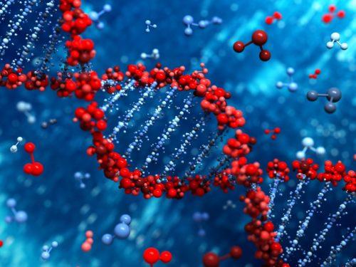 modifica dna di un embrione