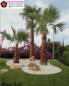 Tukang Taman Jasa Desain & Pembuatan Taman Jasa Tukang Taman pakar dan arsitek taman terpercaya di surabaya gresik Sidoarjo