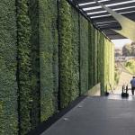 PEMBUATAN VERTICAL GARDEN taman vertikal green wall ( VERTICAL GARDEN ) atau sering disebut pula dengan dinding hijau, vega, dinding hidup, biowalls jakarta