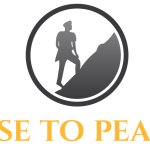 RiseToPeace Vertical 3 - Active Intelligence (Terrorism Database) Internship (Remote)