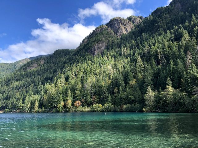 Camping in the rain – Olympic National Park