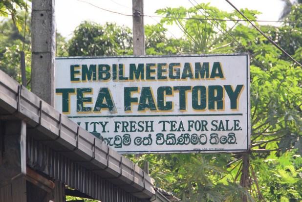 embilmeegama tea factory