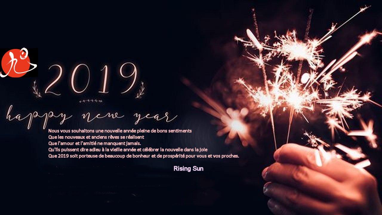 Bonne Et Heureuse Anne 2019 AIKIDO KEMPO KARATE BRUXELLES