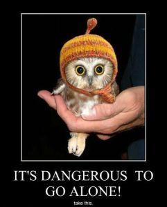 takethe owl