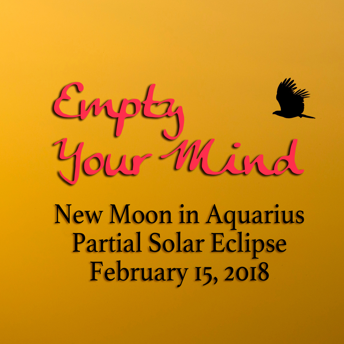New Moon and Eclipse in Aquarius: Empty Your Mind