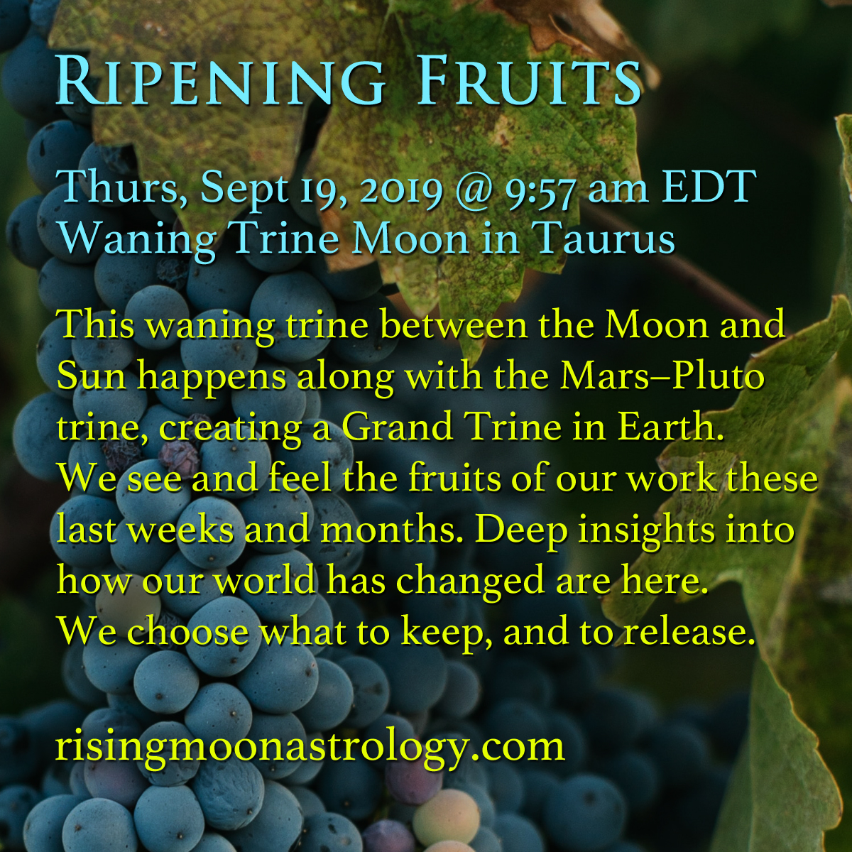 Rising Moon Astrology