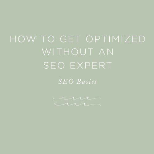 Get Optimized without an SEO Expert | via the Rising Tide Society