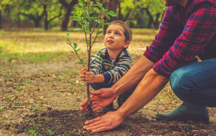 resilience healing growth