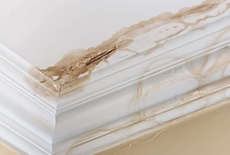 How do you know if your ceiling has water damage