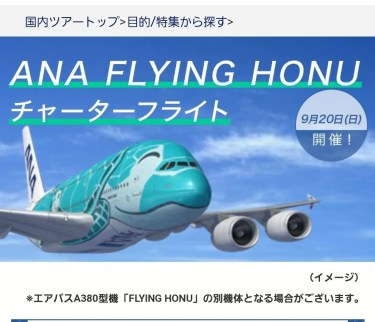 【遊覧飛行搭乗記】ANAフライングホヌ チャーターフライト当選(第2回) 概要・申し込みから当選まで・当日の様子など【ANA FLYING HONU】