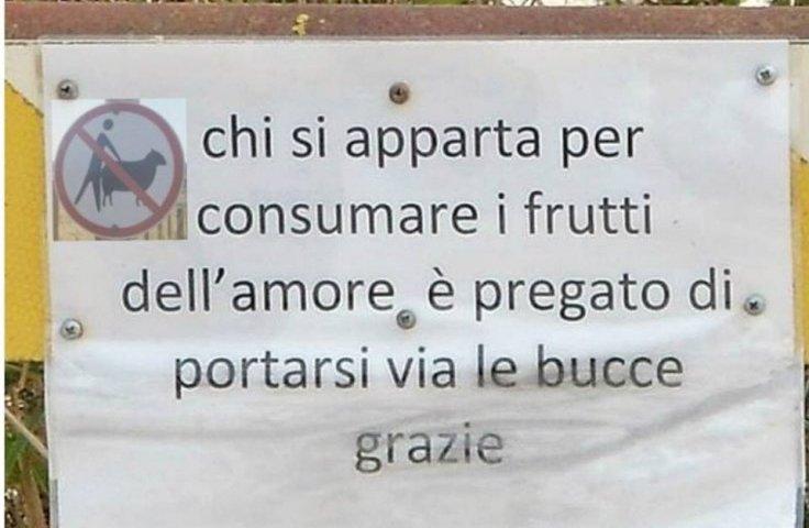 I frutti dell'amore