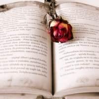 Gli agenti letterari. 3: come NON contattarli