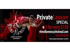 Book a package of Private Lessons!  Private lessons are a great way to get started with flamenco!