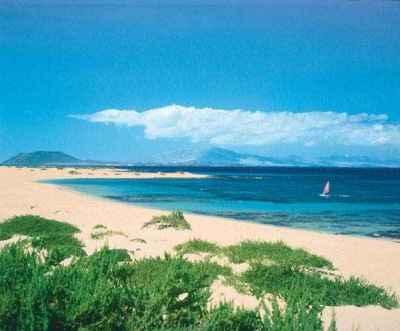 Fuerteventura   Hotels in Fuerteventura   Urlaub in ...