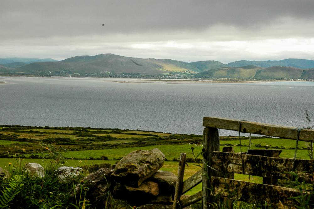 Ireland Dingle Peninsula Fence Hair On Lens