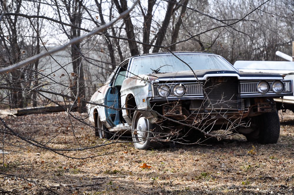 Ruined Car Through Skeleton Trees