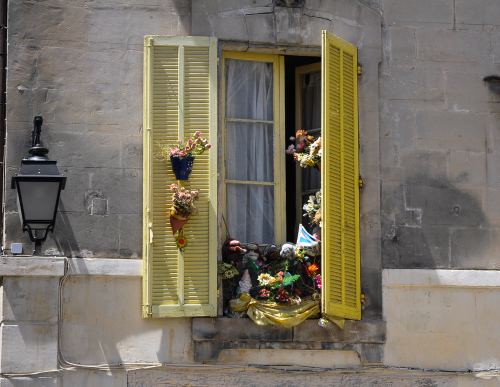 Yellow Shutters So Many Flowers France