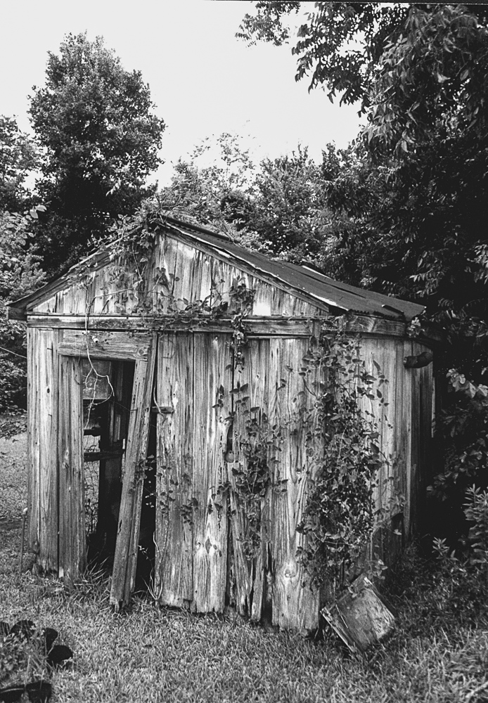 Shack, Ruined, Still Alive