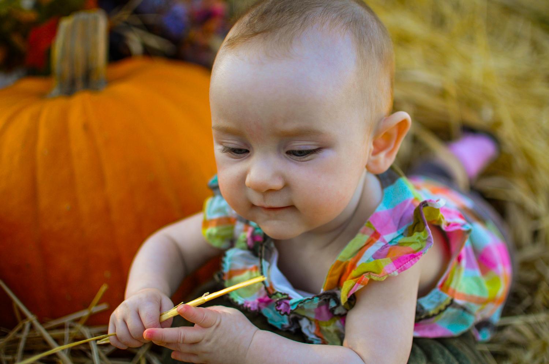 Baby & Pumpkins Halloween