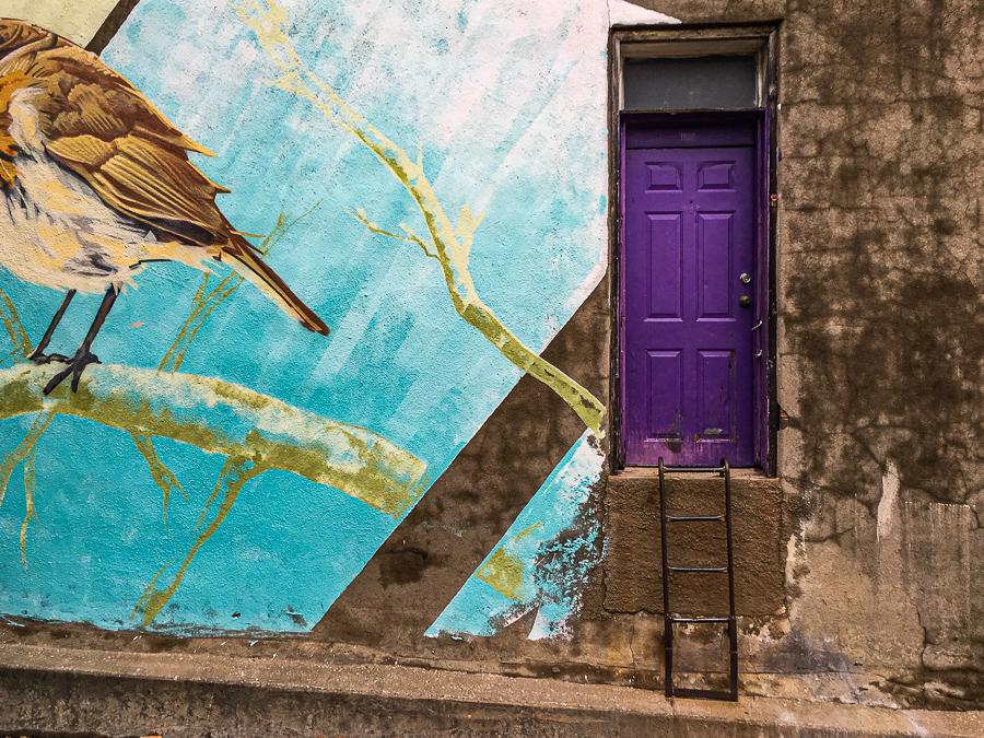 Roadside Relics - Purple Door In Alleyway, Bird Mural, Destin Texas