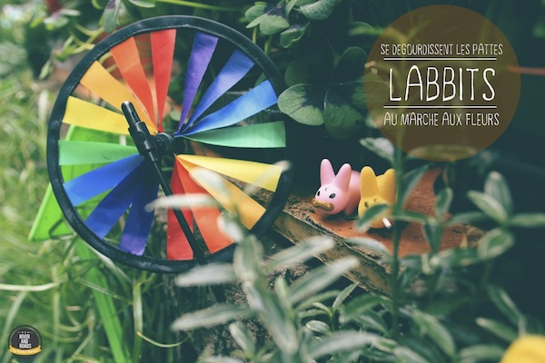 Labbits_colorful 2