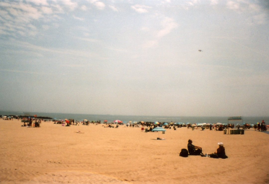 Coney Island Beach sardina