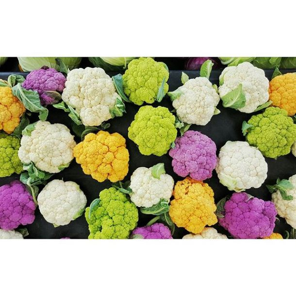 Lots of beauty in #yeg. #124streetmarket #farmersmarket #riverbendgardens #cauliflower #edmontoncooks #yegfood #instagood #instafood #delicious #foodporn