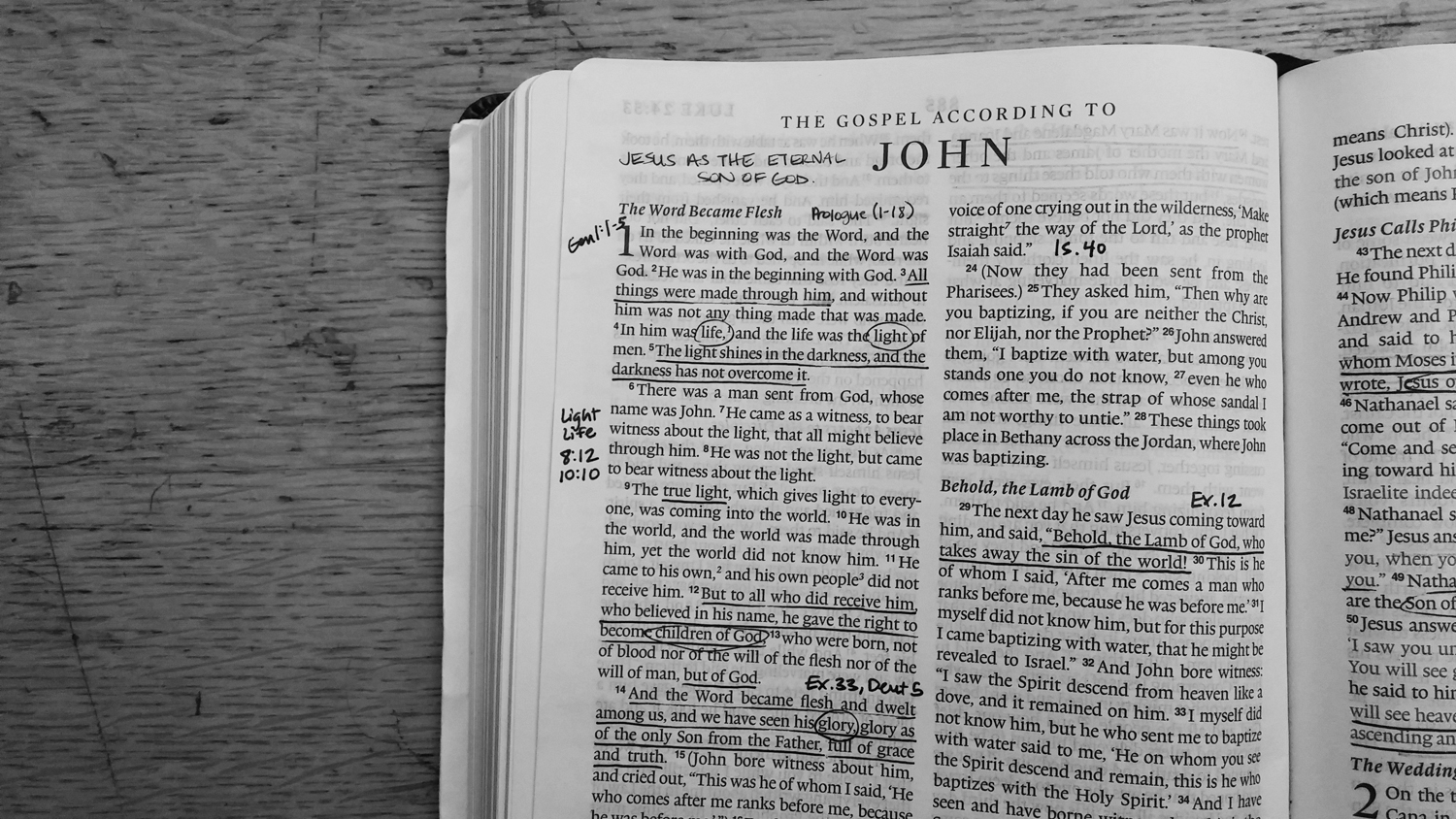 3 resources to help you study John