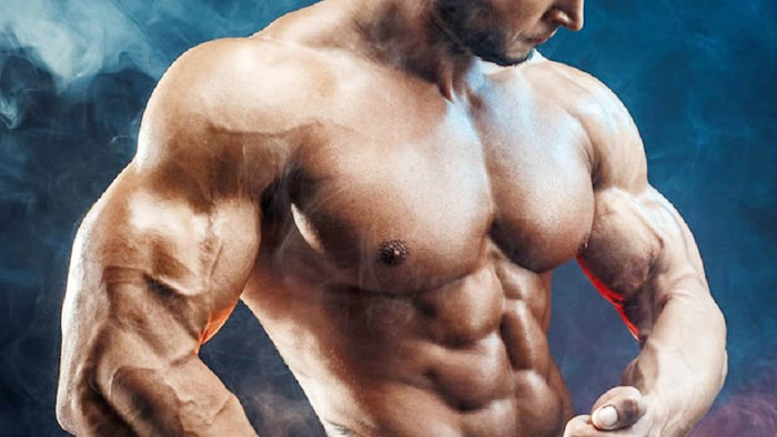 What is the Right Way to Build Muscle Faster?