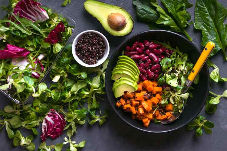The Role of a Vegetarian Diet