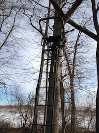 Tree stand used by sharpshooter on land in Cutchogue, according to the Hunters for Deer group. (RiverheadLOCAL photo courtesy of Patrick McBride)