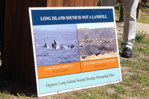 A poster at a press conference yesterday featured a photo of a dolphin pod in the Sound, which was spotted throughout the summer. Photo: Katie Blasl