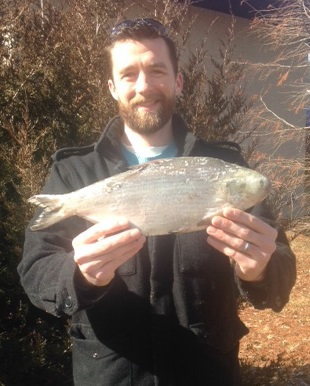 shad state record