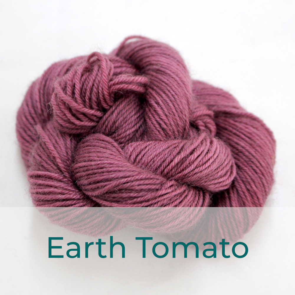 BFL 4 Ply mini skein in Earth Tomato colourway. It is a dusky pink.